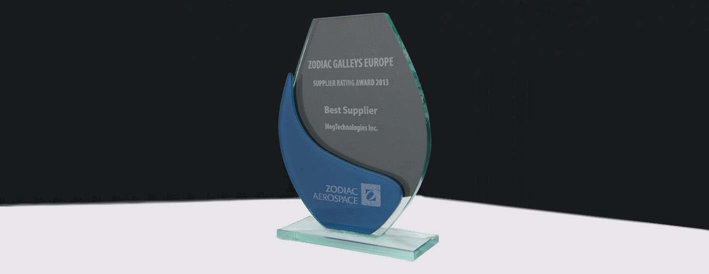 Zodiac Europe Best Supplier 2013